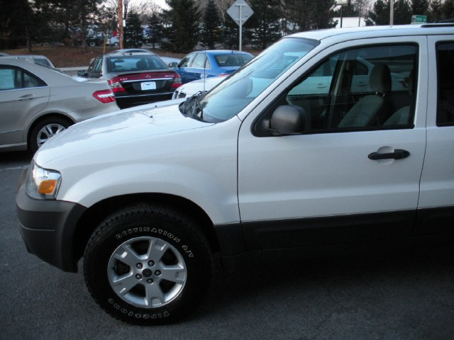 Used 2007 Ford Escape XLT AWD | Albany, NY